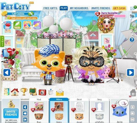 Pet City (480x429)