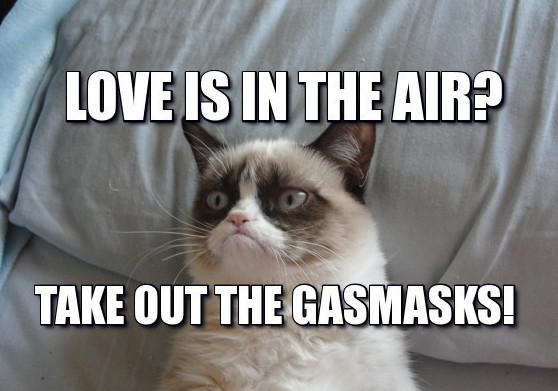 about love e1445328663957 32 funny angry cat memes for any occasion freemake
