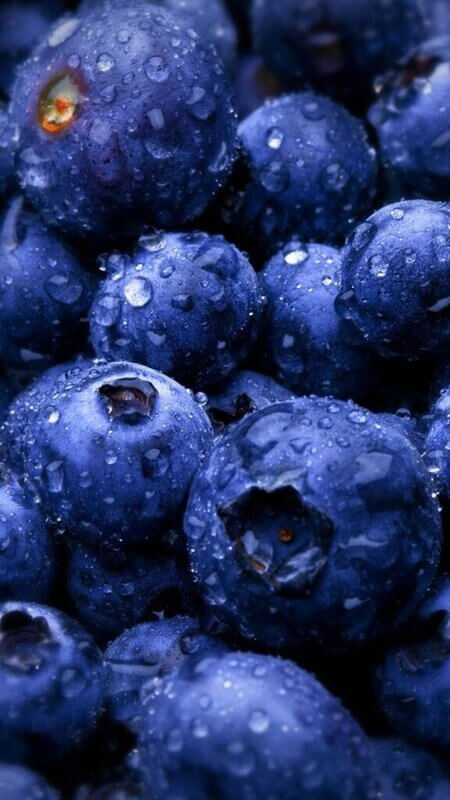 hd droid wallpapers blueberry android for pc