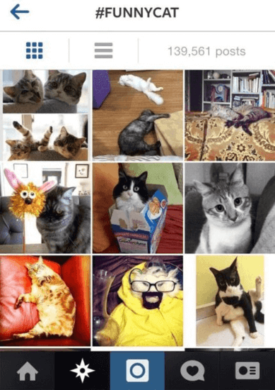 20 Funny Hashtags to Boost Likes - Freemake |Funny Hashtags For Instagram