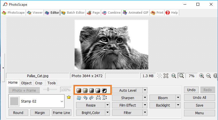 Black and White Filter in PhotoScape