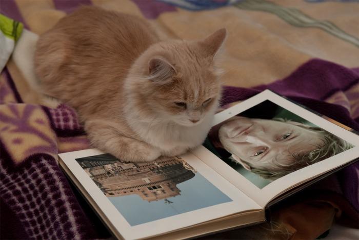 PhotoFunia books