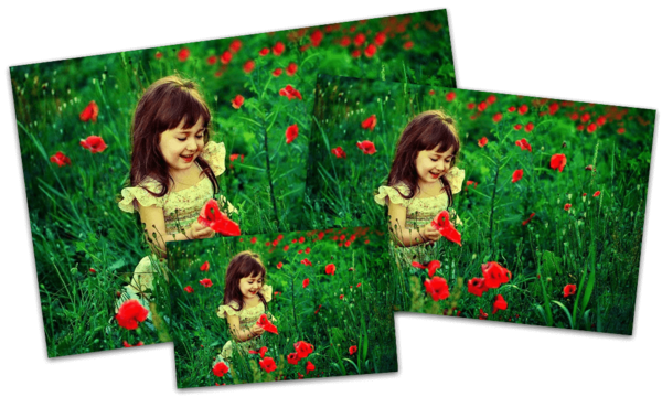 girl in the flowers