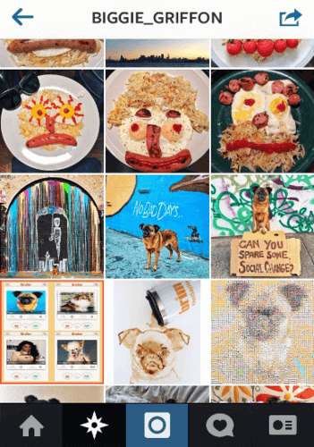 13 Best Funny Instagrams You Must Have in Feed
