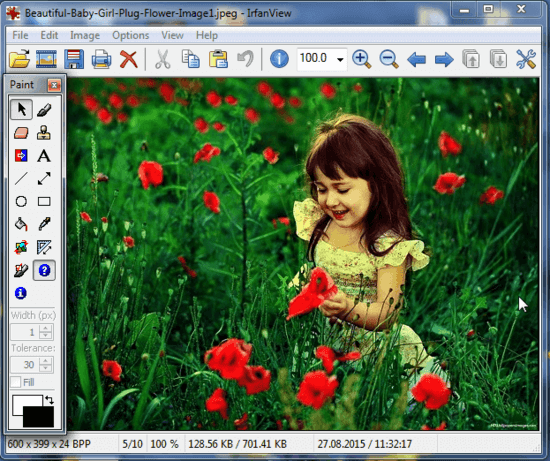 irfanview paint tool