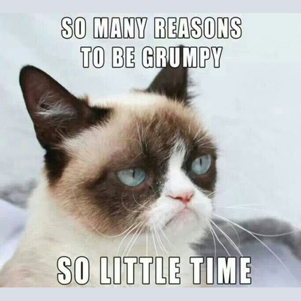 grumpy-cat-about-time